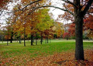 November fall day