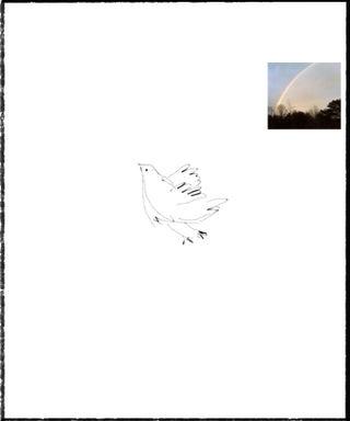 Bluebird storm sketch2
