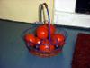 Tomatofairy1_3