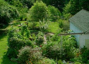 Gardenaug1_3